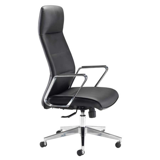 Picture of Pallace Leather Look Chair